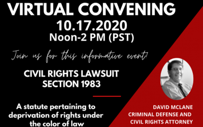 Virtual Convening-Civil Rights Section 1983